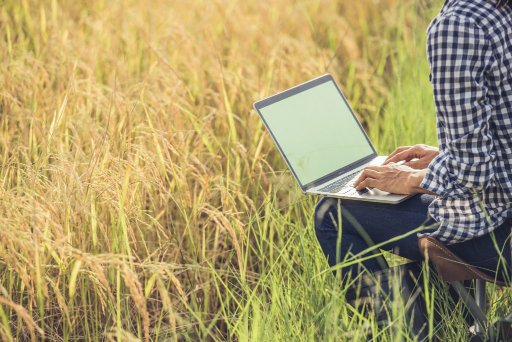 A person using laptop in the farm